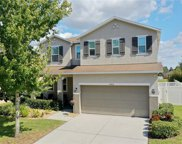 12418 Field Point Way, Spring Hill image