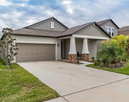 10809 Purple Martin Boulevard, Riverview image