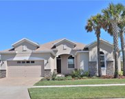 8224 Carlton Ridge Drive, Land O' Lakes image
