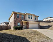 1432 Short Horn Cove, Round Rock image