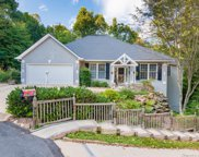 2509 Carriage Falls  Court, Hendersonville image