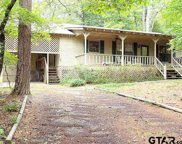 698 Clearwater Trail, Holly Lake Ranch image