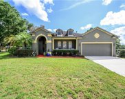501 Crowned Eagle Court, Valrico image