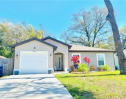10411 N Annette Avenue, Tampa image