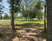 3956 Cove Lake Place, Land O' Lakes image