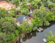 420 Lookover Pointe Drive, Chapin image