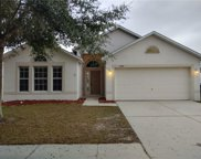 13517 Small Mouth Way, Riverview image