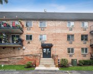 1001 N Mill Street Unit #202, Naperville image