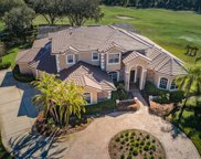 293 Tall Oak Trail, Tarpon Springs image