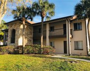 809 Orchid Springs Drive Unit 809, Winter Haven image
