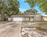 2205 Hemerick Place, Clearwater image