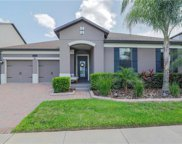 7567 Purple Finch Street, Winter Garden image