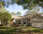 17907 Holly Brook Drive, Tampa image