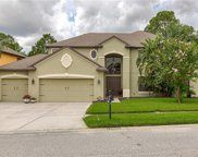 14907 Princewood Lane, Land O' Lakes image