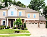 1544 Afton  Way, Fort Mill image