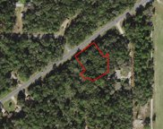 9588 W Dunnellon Road, Crystal River image