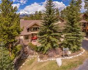 307 Mountain Bluebell, Keystone image