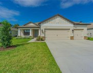 19871 Wading Crane Way, Lutz image