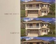 380 Puaehu, Wailuku image