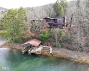 890 Murray Cove Rd, Tiger image
