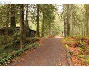 23700 E LOLO PASS  RD, Rhododendron image