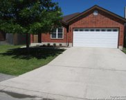 8211 Chestnut Manor Dr, Converse image