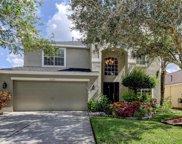 11226 Cypress Reserve Drive, Tampa image