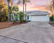 3919 Fan Palm Court, Land O' Lakes image