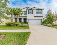 7531 Lantern Park Avenue, Apollo Beach image