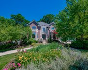 135 Settlers Drive, Naperville image