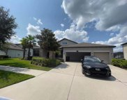 11816 Harpswell Drive, Riverview image