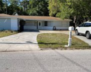 7306 Apache Trail, Spring Hill image