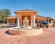 16801 Wildcat  Drive, Fort Myers image