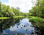 3323 SOUTHERN OAKS DR, Green Cove Springs image