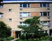 7431 North Ridge Boulevard Unit 2D, Chicago image