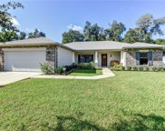 315 Stonebridge Lane, Orange City image