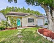 12416 Pepperfield Drive, Tampa image