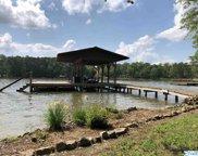 615 County Road 671, Cedar Bluff image
