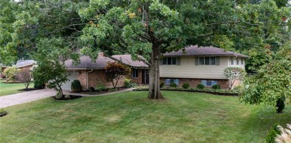 1245 Brainard Woods Drive, Washington Twp