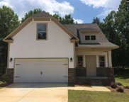 346 Dolly Horn Lane, Chapin image