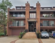 7 Cinnamon Creek Drive Unit #1S, Palos Hills image