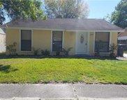 16017 Splitlog Drive, Tampa image