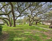 8607 Cattail Drive, Temple Terrace image