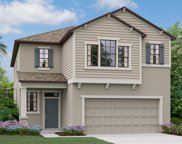 21809 Crest Meadow Drive, Land O' Lakes image