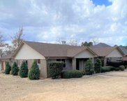 135 Lily, Maumelle image