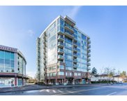 12069 Harris Road Unit 304, Pitt Meadows image