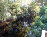 208 Lazy River Court, Jacksonville image