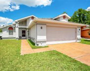 111 Zolfo Springs Court, Kissimmee image
