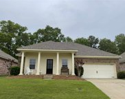 443 Silver Hill Dr, Pearl image