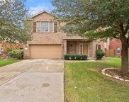 116 Emory Fields Drive, Hutto image